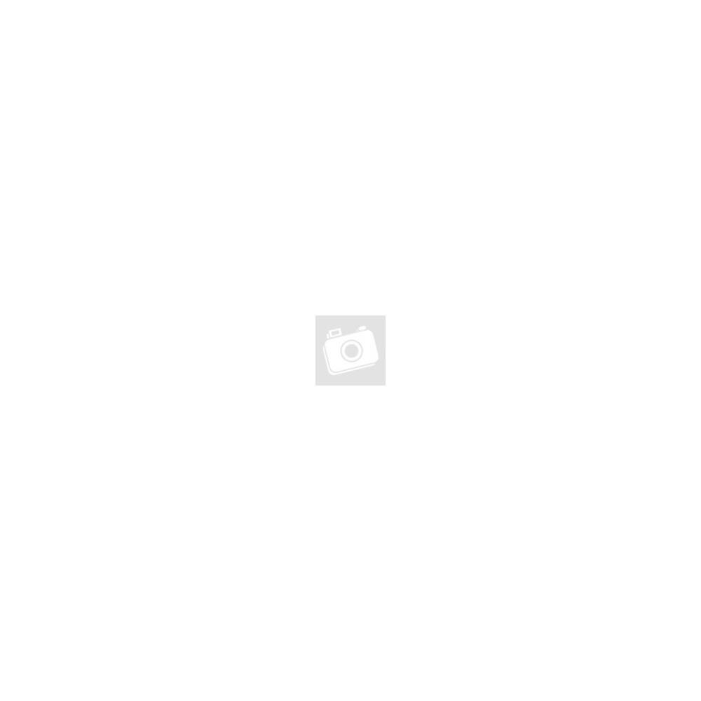 Elsa - Legyen hó - Jégvarázs Frozen Disney iPhone fekete tok